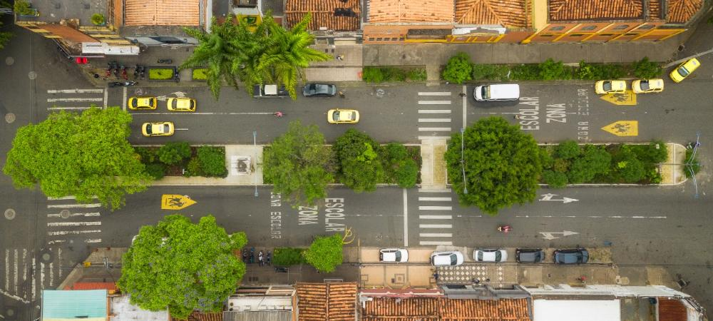 Corredores verdes de Medellín ganan premio internacional de sostenibilidad