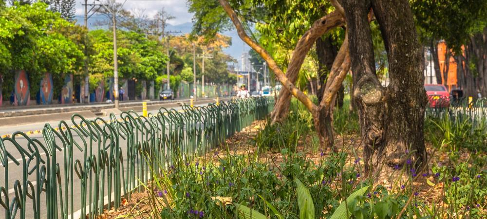 Otro reconocimiento mundial para los corredores verdes